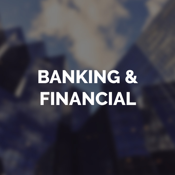 Banking and Financial Sector